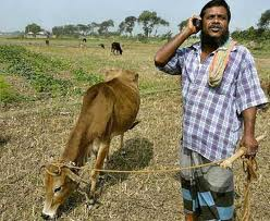 indian farmer and mobile