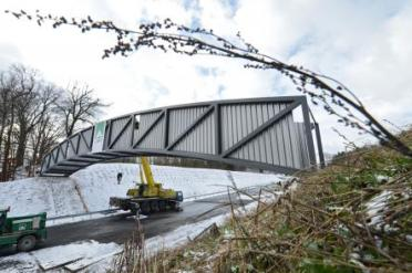€435,000 was spent on building two bridges for field mice in In Bieberbach in the state of Baden-Württemberg. If the mice don't use the bridge no-one can photo DPA