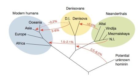promiscuity in the pleistocene