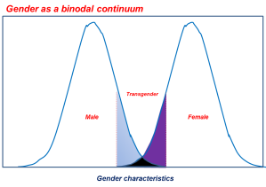 Gender as a binodal continuum