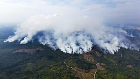Västmanland forest fire 2014 - Jocke Berglund -TT