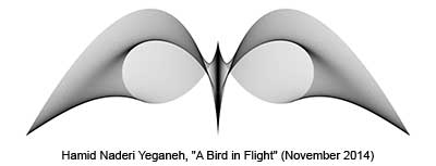 Yeganeh bird in flight