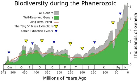 The fossil record shows that biodiversity in the world has been increasing dramatically for 200 million years and is likely to continue. The two mass extinctions in that period (at 201 million and 66 million years ago) slowed the trend only temporarily. Genera are the next taxonomic level up from species and are easier to detect in fossils. The Phanerozoic is the 540-million-year period in which animal life has proliferated. Chart created by and courtesy of University of Chicago paleontologists J. John Sepkoski, Jr. and David M. Raup.