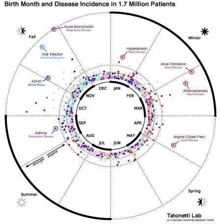 Tatonetti Lab disease and time of birth