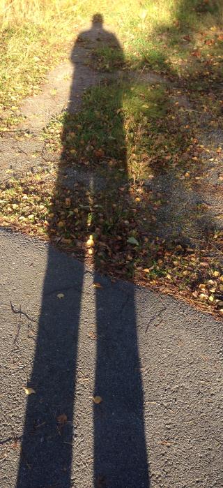 Shadow of a selfie