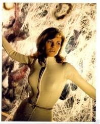 Raquel Welch fantastic voyage