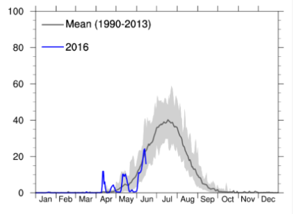 The percentage of the total area of the ice where the melting occurred from January 1 until today (in blue). For comparison the average for the period 1990-2013 is shown in the dark grey curve.