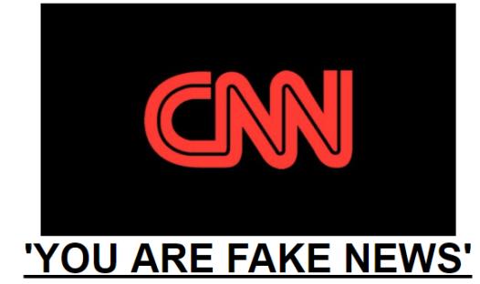 cnn-fake